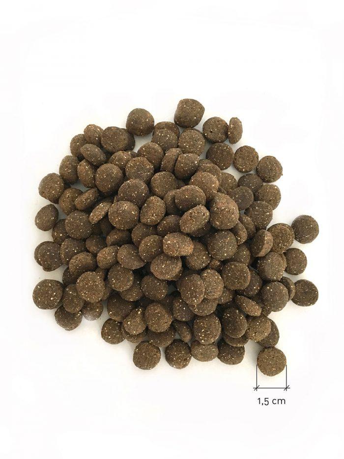 Trockenfutter nachhaltig Hund eat small