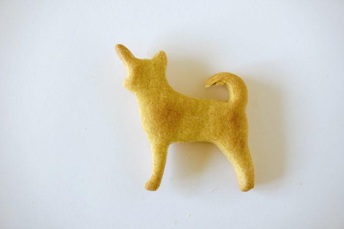 Vegane Kekse Karotten hundsfutter